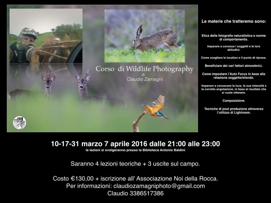 Locandina wildlife per blog..001