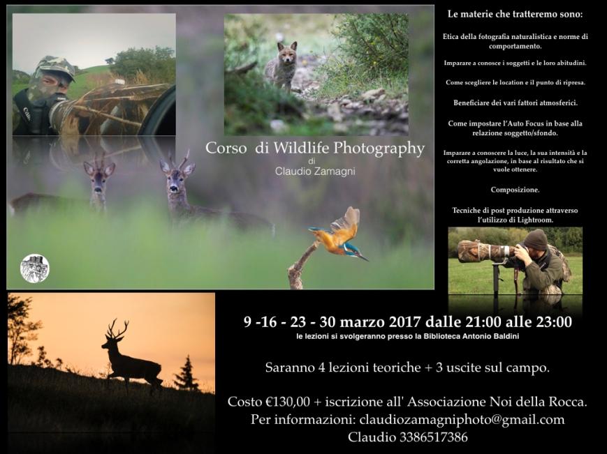 locandina-wildlife-per-blog-001